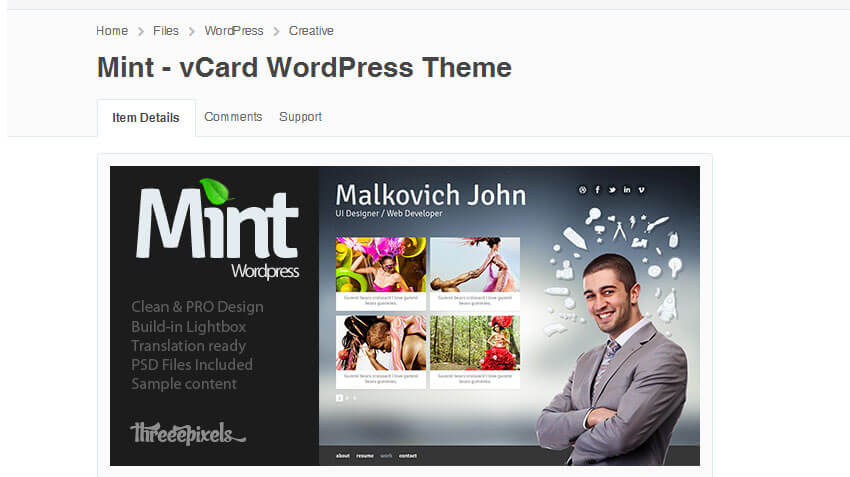 Mint - vCard Wordpress Theme