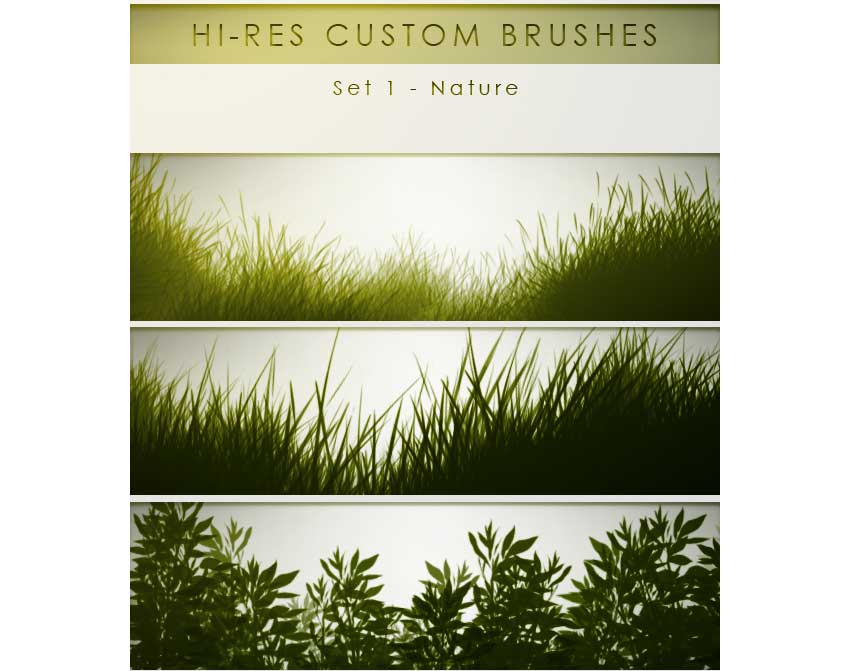 30 Hi-Res Custom Brushes - Nature