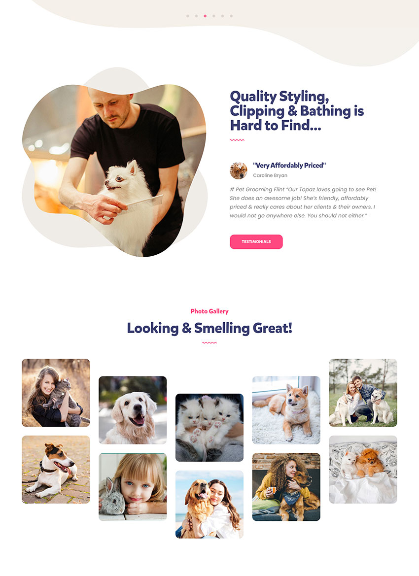 Petzen -  Tema de WordPress para centro de cuidado de mascotas