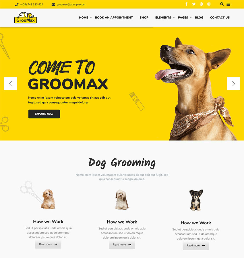 Groomax - Pet Grooming  Shop WordPress Theme