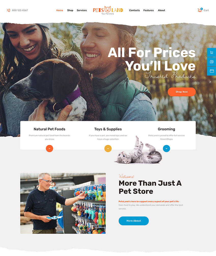 Pets Land Domestic Animals Shop Veterinary WordPress Theme