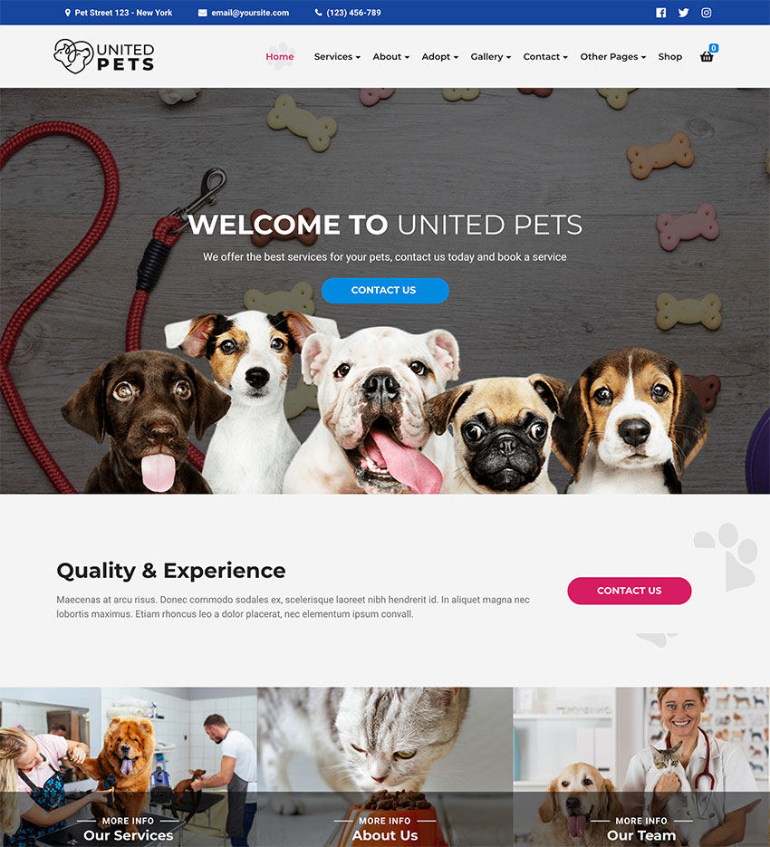 United Pets - Pet Shop  Veterinary WordPress Theme