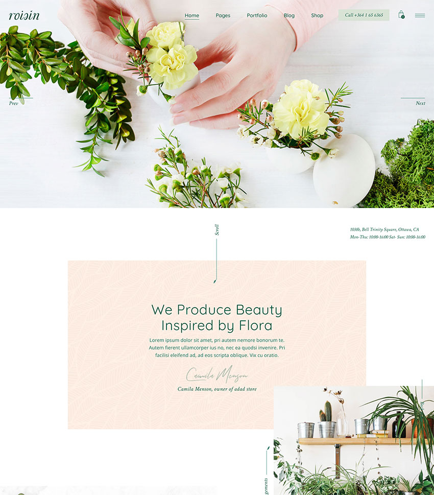 Image of Roisin   Flower Shop and Florist Theme
