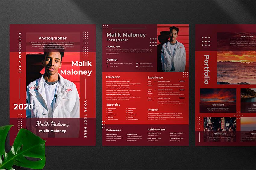 Best In 2020 35 Professional Resume Cv Design Templates Cool