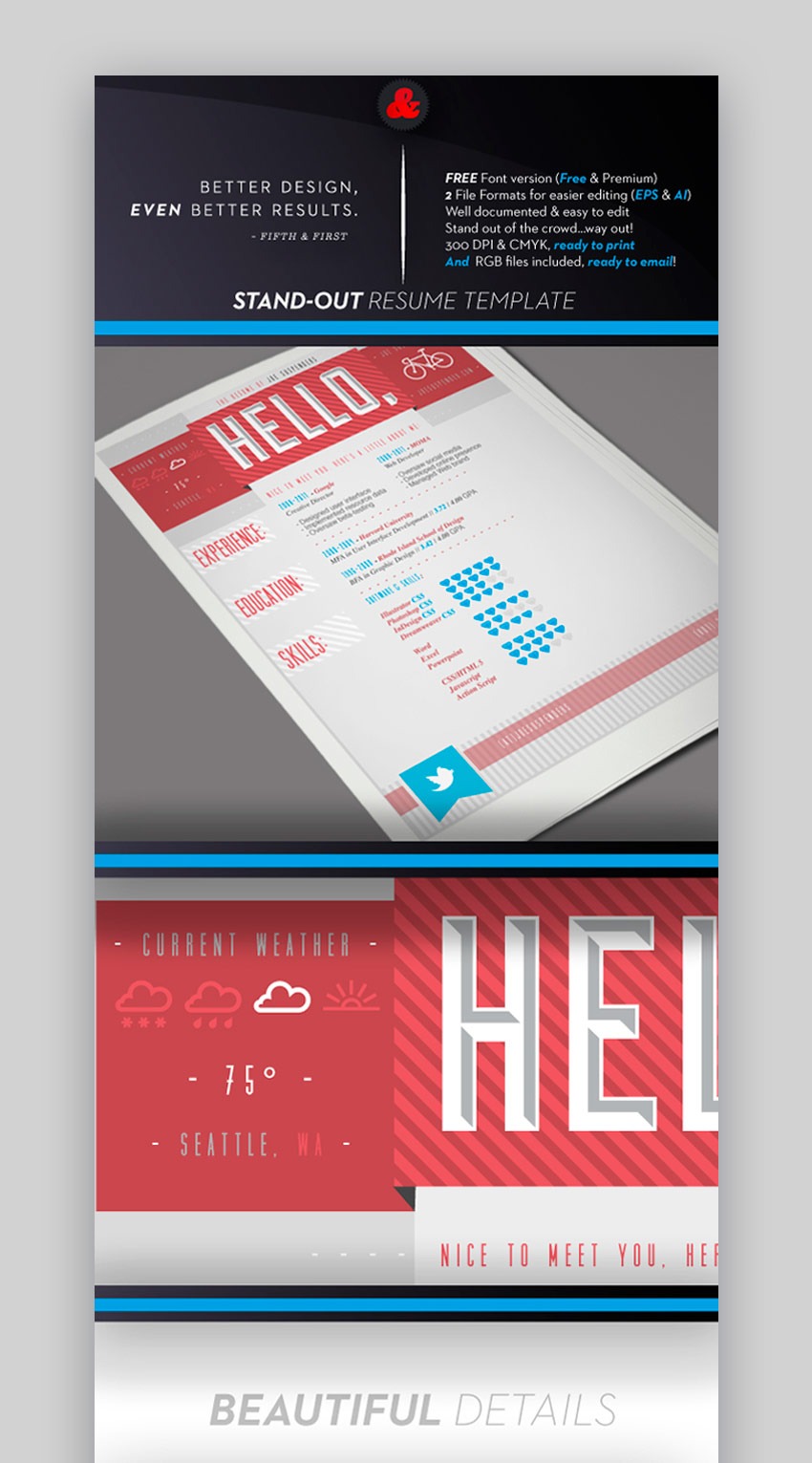 Stand-Out Resume Template