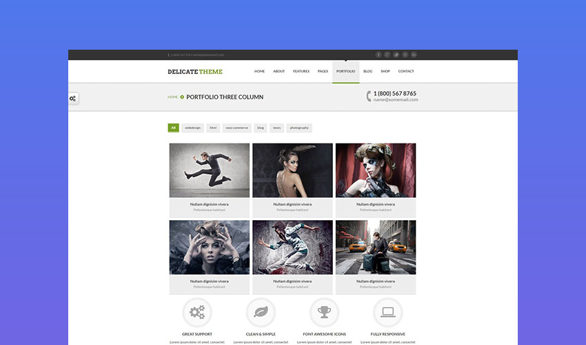 Delicate - Elegant Responsive Website Template