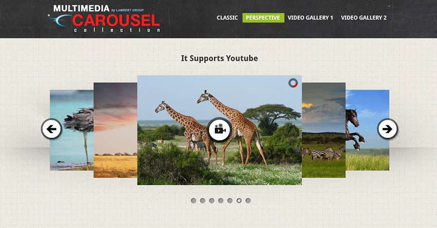Multimedia Responsive Carousel with Image Video and Audio Support