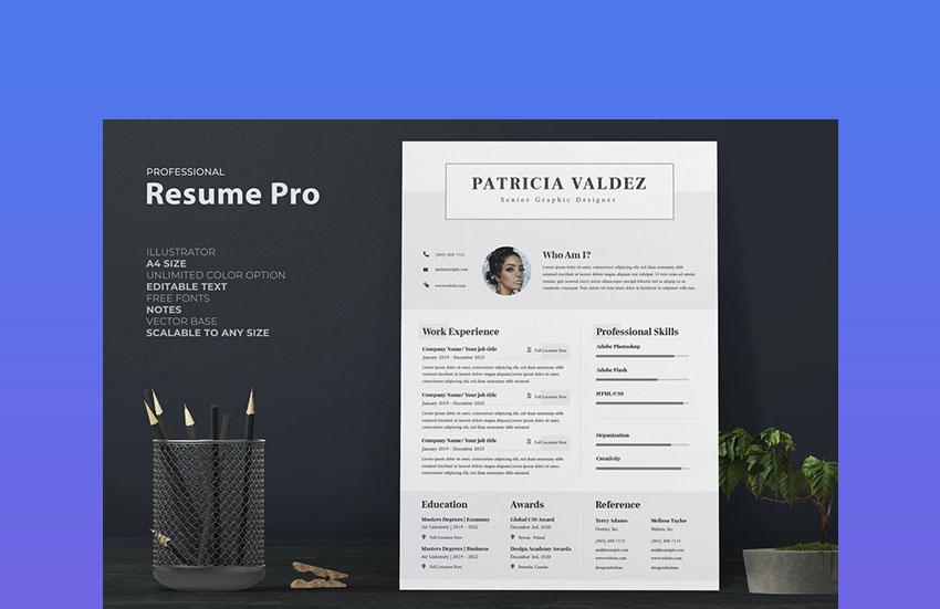 35+ Best Professional Business Resume (CV) Templates (2021)