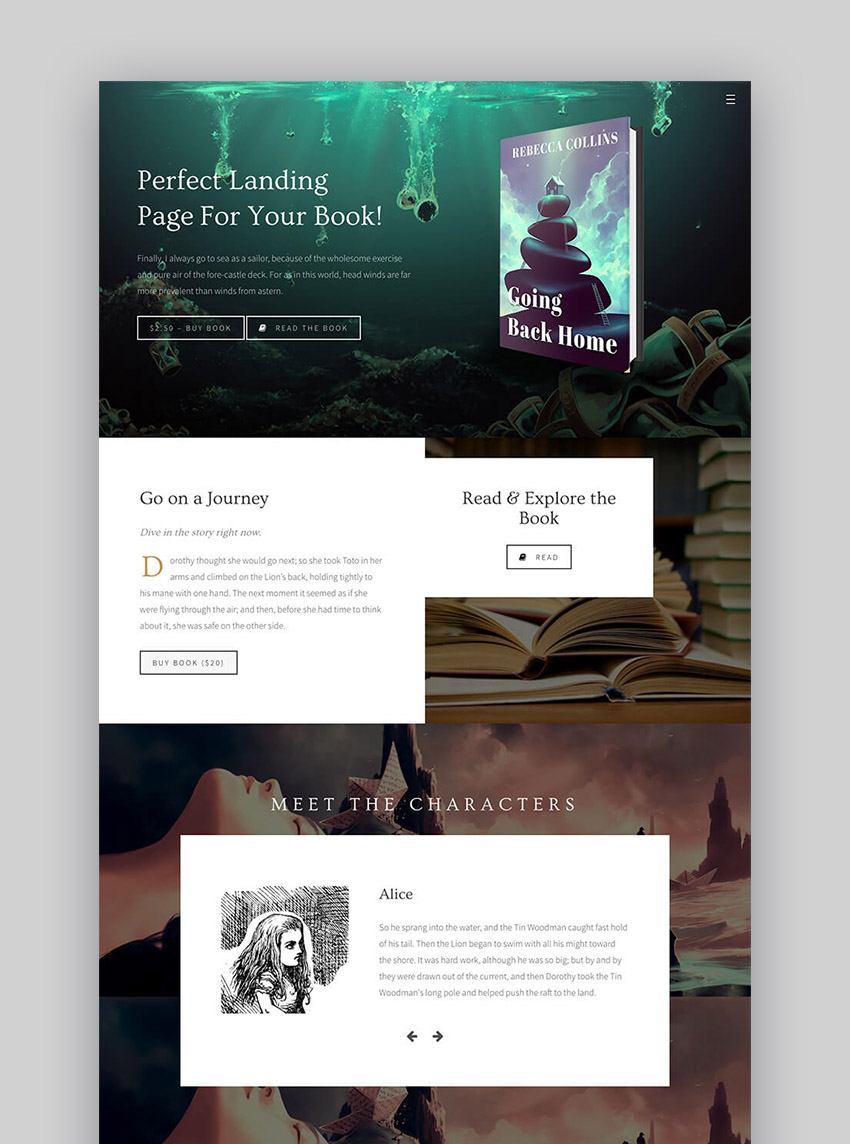 Novela Stylish Author WordPress Theme for eBooks Sales