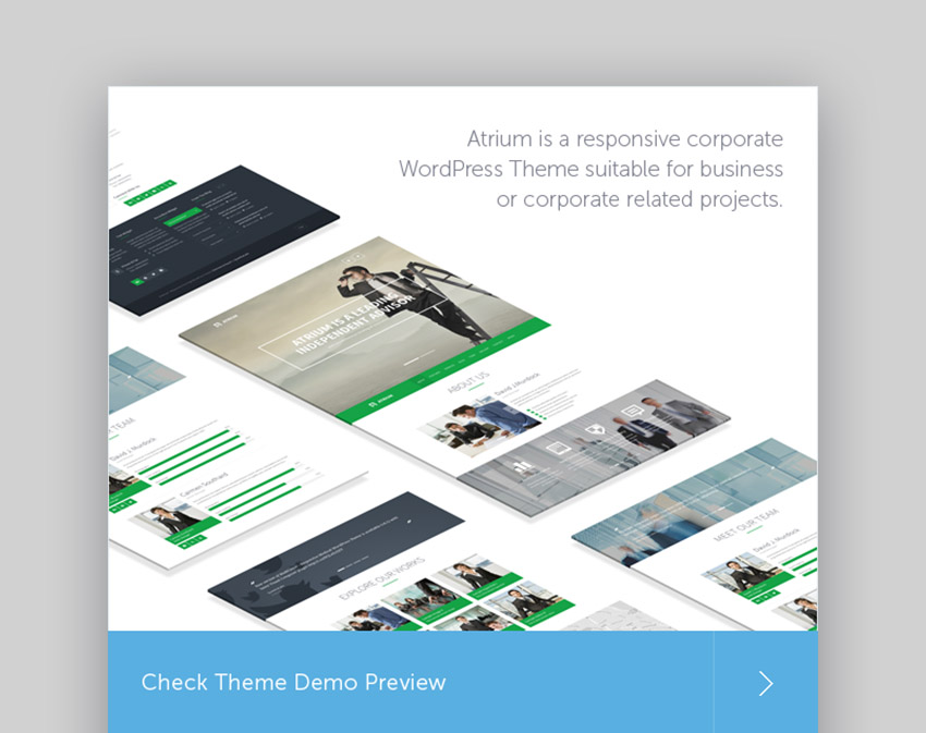 Atrium Consulting Expert WordPress Theme