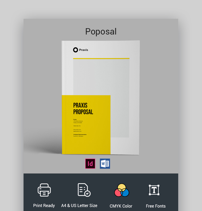Professional Project Proposal Template