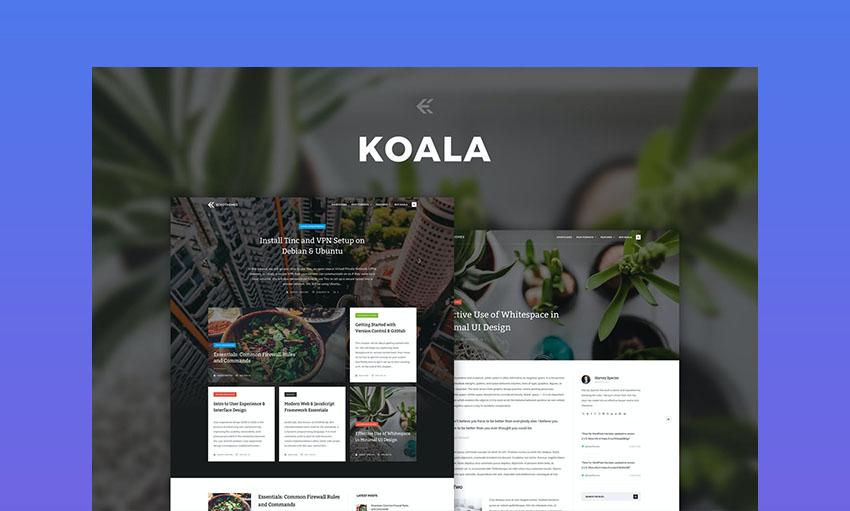 Koala WordPress video theme