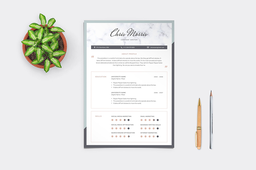 Resume with White Space