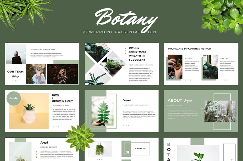 Botany PPT Slide Design Download