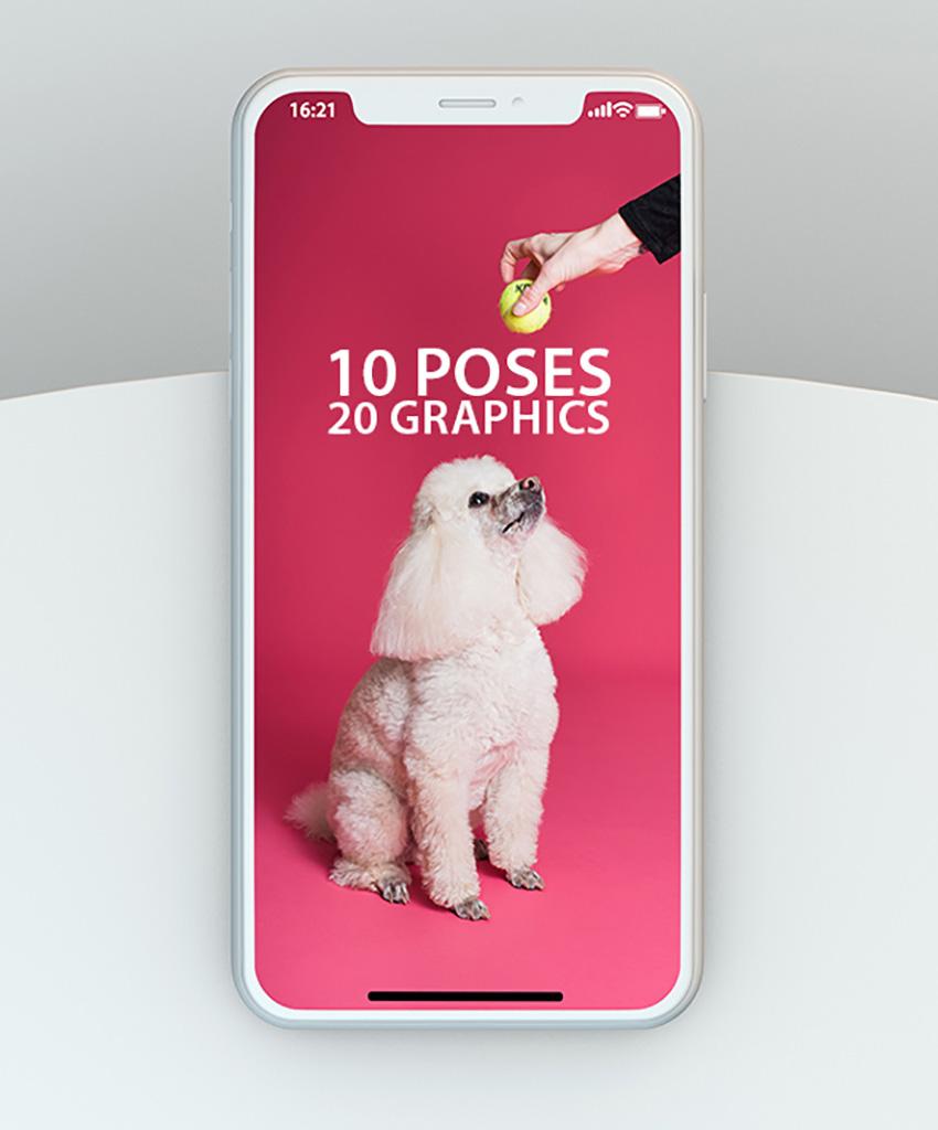 iPhone 11 Mockup Template