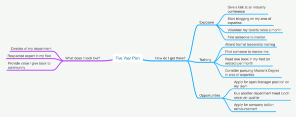 Five year plan mind map