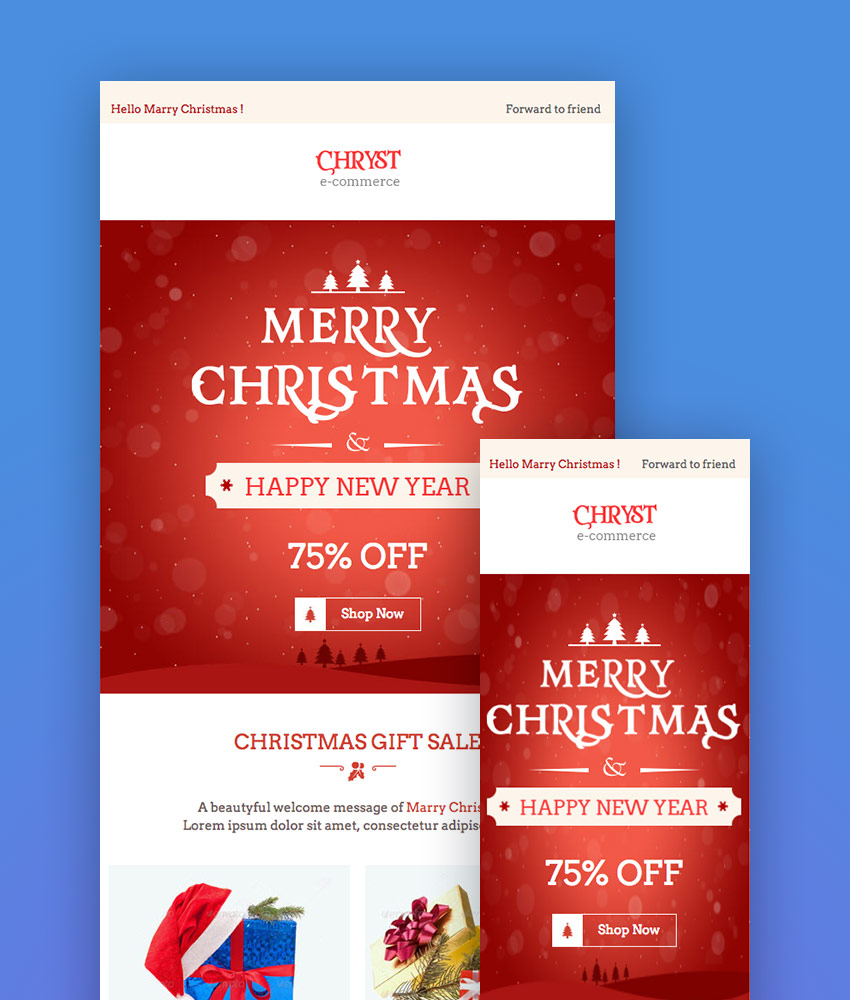 Christmas Offers E-Newsletter  Builder Access