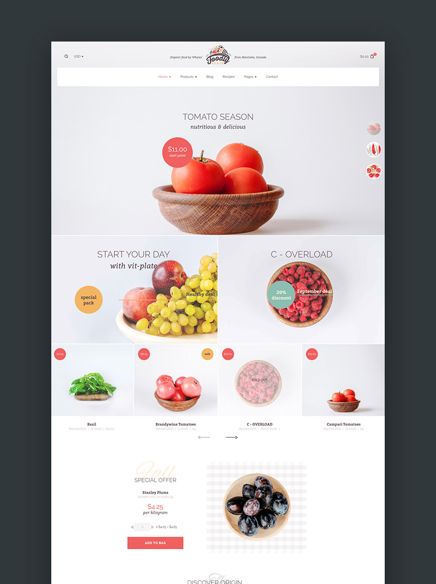 foodly onestop shopify grocery shop