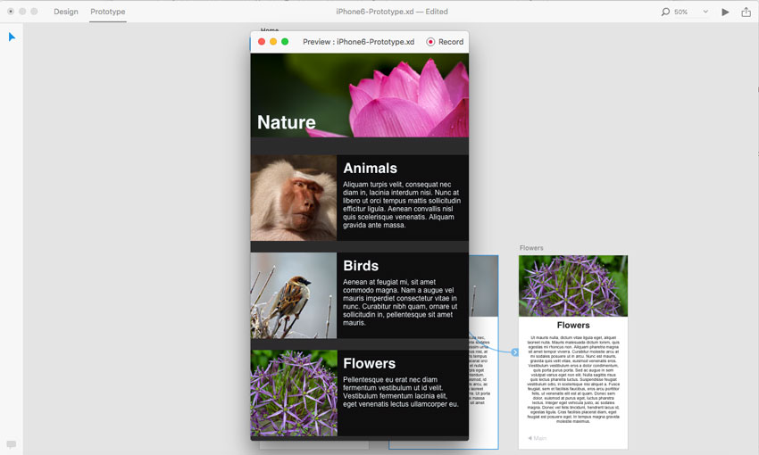 Previewing the prototype in Adobe XD