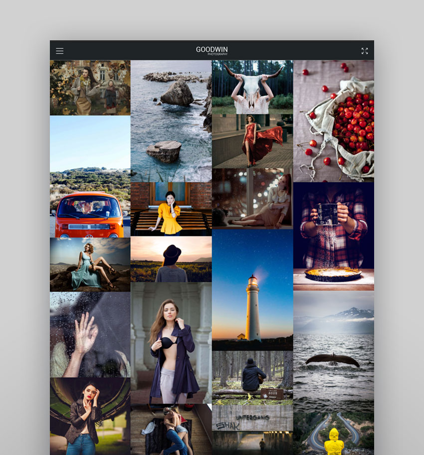 Goodwin - Photography Video WP Theme