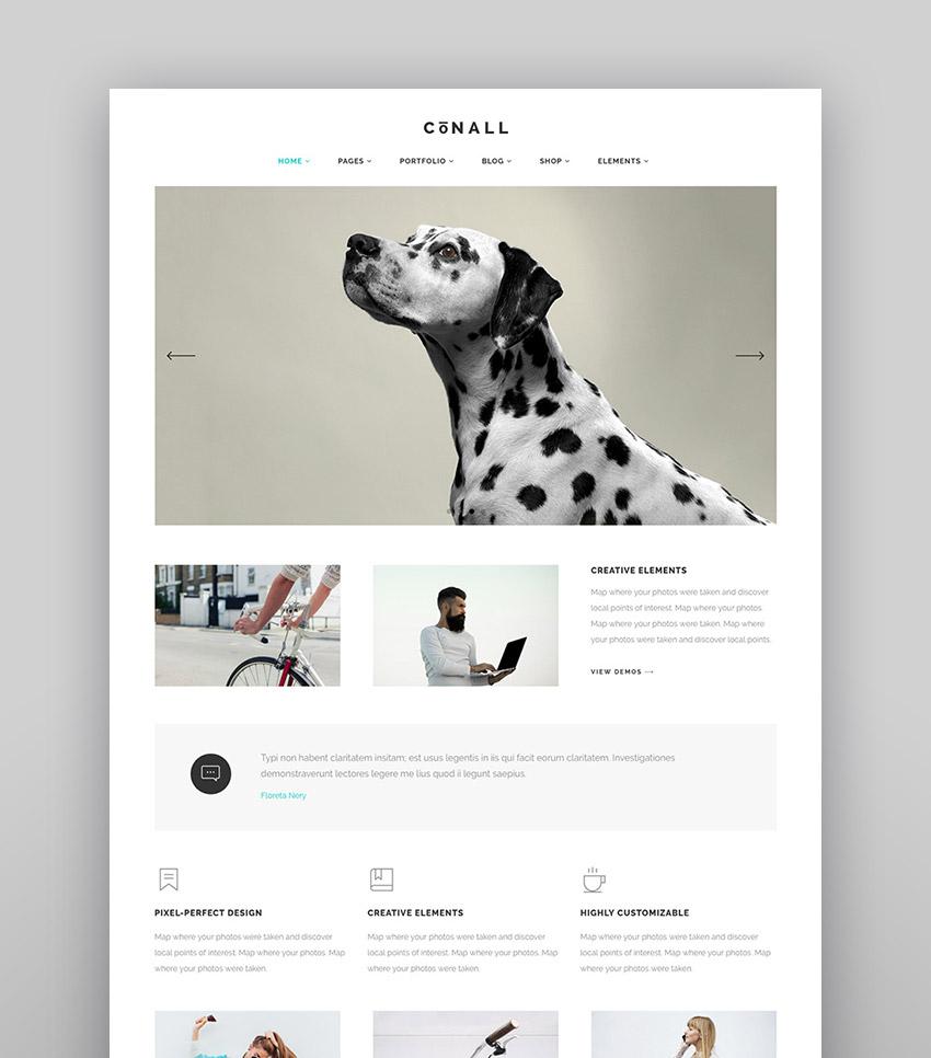 Conall - Minimalistic WP Agency Theme Design