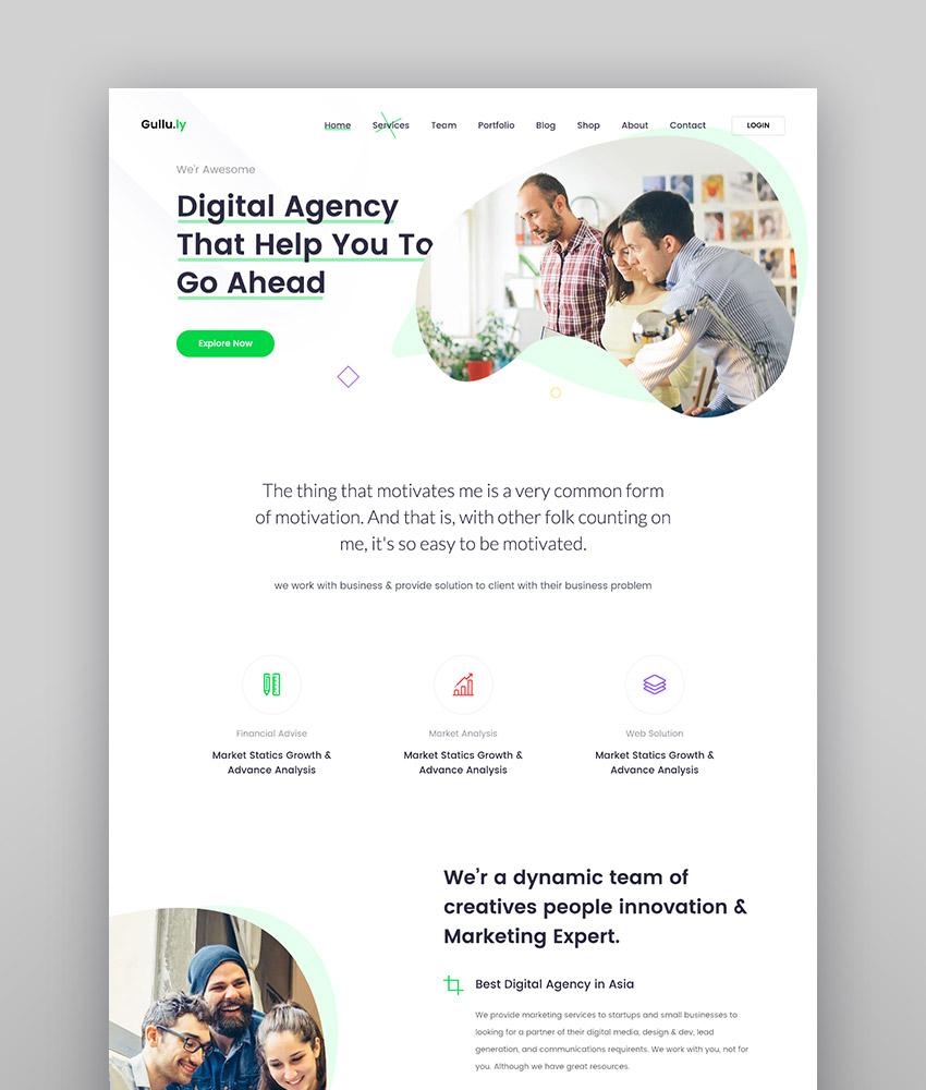 Gullu consultant WordPress theme