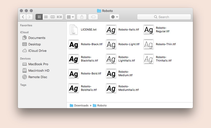 Contents of Roboto web font folder