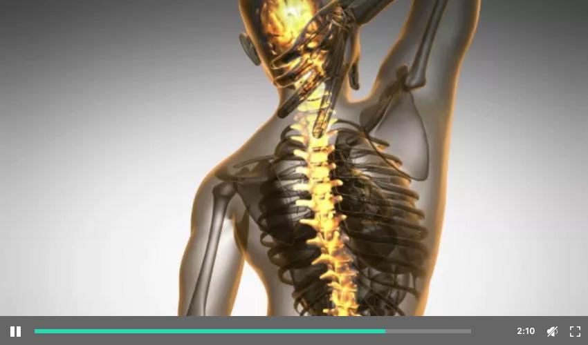 背部骨骼背痛