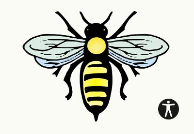 A11y bee