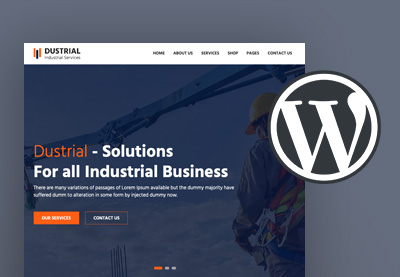 20 Best Cheap WordPress Themes (Quality Budget Website Designs for 2020)