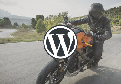 15+ Super Fast Page Loading WordPress Themes (Free and Premium) for 2020