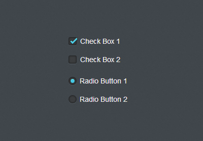 Preview for Quick Tip: Easy CSS3 Checkboxes and Radio Buttons