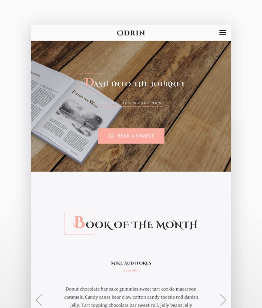 OdrinBook Selling WordPress Theme for Writers