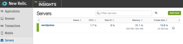 Initial New Relic Server insights