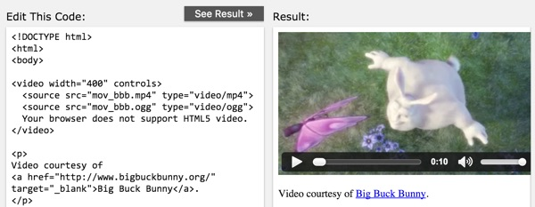What is HTML5 Video Example