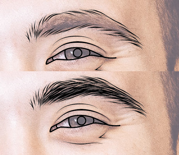 Render the eyebrows
