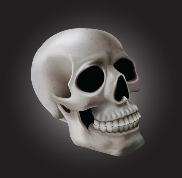 Monika Zagrobelnas Mesh Skull