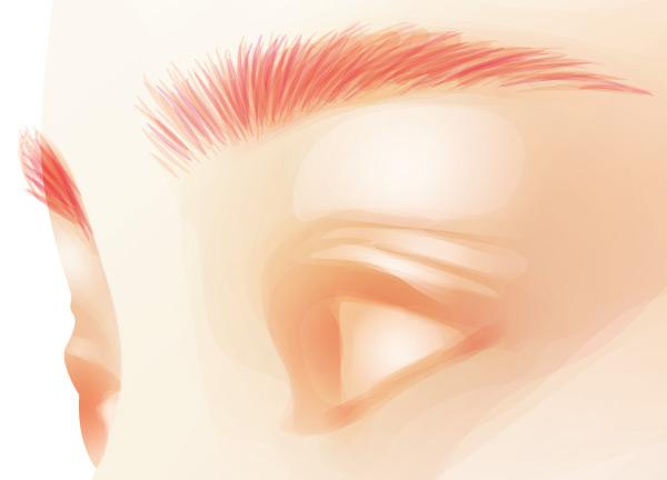 Adding the eyebrows