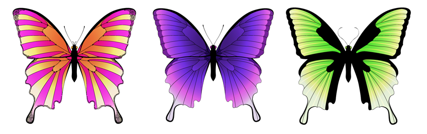How to Create a Mirrored Butterfly in Adobe Illustrator