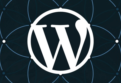 https://code.tutsplus.com/tutorials/how-to-determine-what-to-build-with-wordpress--cms-26548