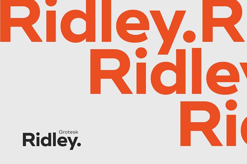 Ridley Grotesk Font Family