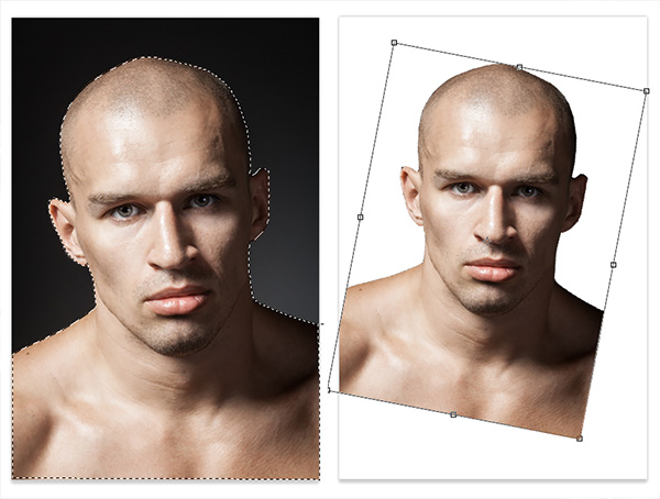 Rotate An Image With Free Transform
