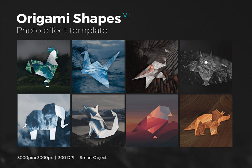 Origami Shape Photo Template
