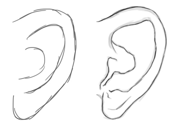 Drawing and Sketching a Human Ear