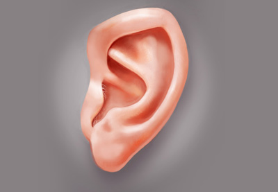 Ear preview2
