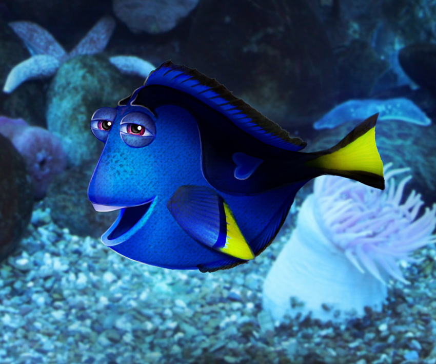 How To Create A Dory Inspired Photo Manipulation In Adobe