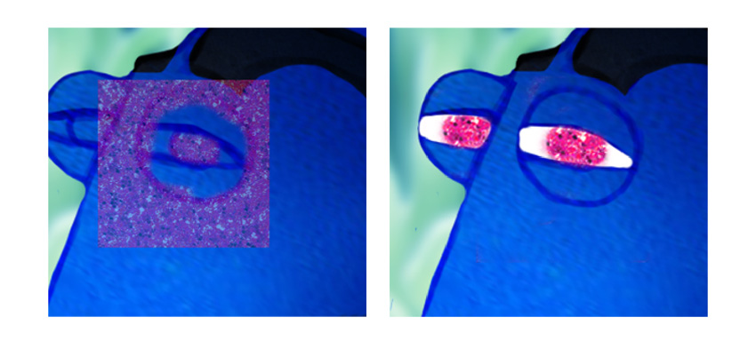 Adding Dorys Glittery Eyes in Photoshop