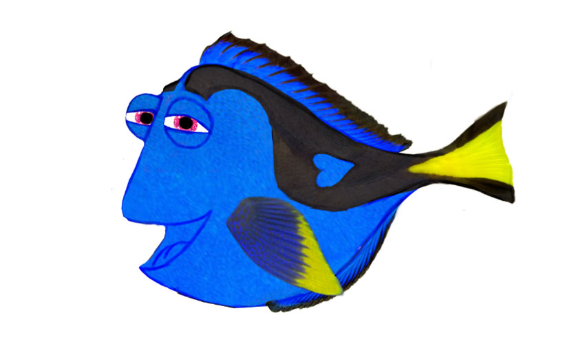 Dory with Photo Textures