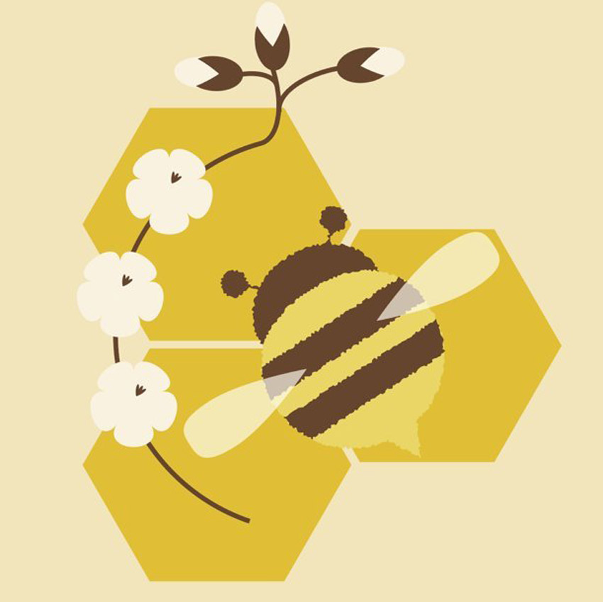 Honey Bee HoneyComb Tutorial Adobe Illustrator