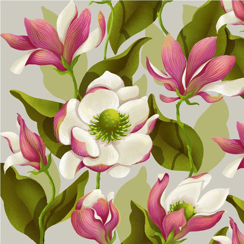Magnolia Bloom by Lidija Paradinovic Nagulov